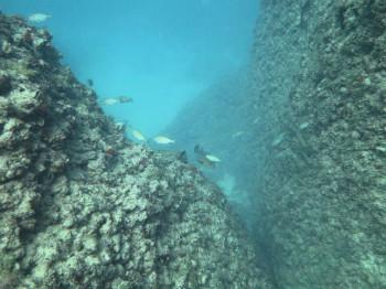 אתרי צלילה בצפון